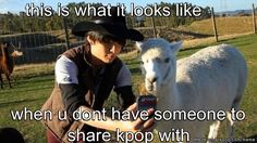 or when i dance/sing kpop in front of my dog XD well i can always talk with my poster and/or computer >.