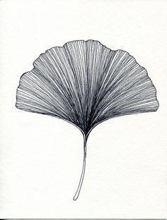 43 Ideas To Draw Black Ink Etsy - Tiny House Fam .- 43 Ideen zum Zeichnen von Tinte schwarz Etsy – Tiny Haus Familie Idee 43 Ideas For Drawing Ink Black Etsy / - Botanical Art, Botanical Illustration, Illustration Art, Illustrations, Tatoo Flowers, Natur Tattoos, Plant Drawing, Cactus Drawing, Leaf Drawing