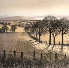 Unfortunately I'm NOT going north today as usual, regrets. Art by Kathleen Unfortunately I'm NOT going north today as usual, regrets. Art by Kathleen Caddick Landscape Drawings, Landscape Prints, Abstract Landscape, Landscape Paintings, Etching Prints, Art Graphique, Wood Engraving, Tree Art, Black White
