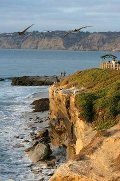cliffs of la jolla beach, san diego..been here. it's mesmerizing♡♡