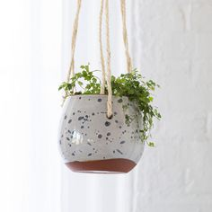 """Handmade in Portugal and topped with a colorful glaze, these suspended terracotta pots are perfect for trailing plants and vines.- Glazed terracotta, rope- Indoor use only- Drainage hole included- Handmade in PortugalHanging rope: 24""""LPot: 5.25""""H, 4.8""""D, 5"""" diameter at mouth"""