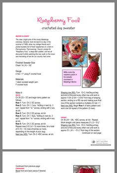 Knitted Dog Sweater Pattern, Knit Dog Sweater, Dog Pattern, Free Pattern, Raspberry Fool, Small Dog Sweaters, Animal Sweater, Dog Jumpers, Dog Clothes Patterns