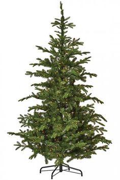 Martha Stewart Living™ Norwegian Spruce Artificial Tree - Artificial Christmas Tree - Green Christmas Tree - Holiday Decor - Christmas Decor | HomeDecorators.com