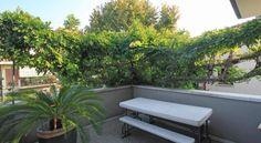 Sweet - #Apartments - $75 - #Hotels #Italy #Rimini http://www.justigo.com/hotels/italy/rimini/sweet-rimini_127675.html