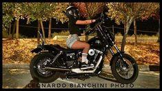 Youre Doing It Wrong, Harley Dyna, Street Bob, Club Style, Harley Davidson, Europe, World, Fun, Instagram