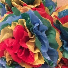 Flores São João 2016