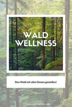 Heute schon einen Waldspaziergang gemacht? ... Einfach ein paar Sonnenstrahlen genießen und die frische Waldluft einatmen!  Warum Ausflüge in den Wald wichtig für uns sind und Informationen zum Thema Wald- Wellness in Thüringen, erfahrt ihr in unserem Artikel.