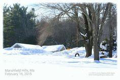Marshfield Hills, Ma - February 2015 Snow Storm - Laura Healing With Spirit, Spiritual Medium, Speaker, Teacher - www.healingwithspirit.webs.com