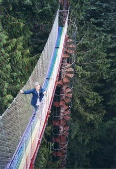 The Stairway to Heaven is an 80' spiral staircase winding around a fir tree in Mt. Rainier.  The 43' long suspension bridge is the only route to the Cedar Creek Observatory. I'll wait for you in the coffee shop.