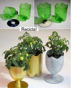Macetas con botellas plásticas
