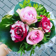 Flower 💕 #Rosen #rose #flower