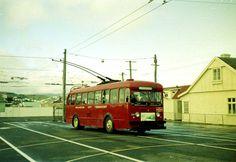 Buses, New Zealand, Transportation, Art, Art Background, Kunst, Performing Arts
