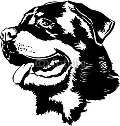 Illustration about Black and white illustration of a Rottweiler ina marker style. Illustration of show, teeth, marker - 64650398 Machine Silhouette Portrait, Dog Silhouette, Animal Stencil, Animal Templates, Black And White Dog, Wood Burning Patterns, Stencil Patterns, Scroll Saw Patterns, Black And White Illustration