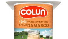 Yoghurt Colun Batido Damasco 125 gr - Colun - Toda la magia del sur
