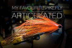 Here is a video of my favourite pikefly, an articulated bucktail&flash fly. Materials used: -Shank + Gamakatsu worm36 5/0 hook -Bucktail -Flashabou -Epoxy eyes -Superglue -Epoxy -Coated 7 strand 45lbs