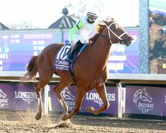 Monomoy Girl adds to her legacy with strong Distaff win Horse Racing, Race Horses, Breeders Cup Classic, Winning Time, Churchill Downs, Seventh Grade, Victorious, Losing Her, World Championship