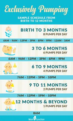 Exclusively Pumping: Sample Schedule From Birth To 12 Months baby breastfeeding baby infants baby quotes baby tips baby toddlers Baby Trivia, Pumping Schedule, Baby Schedule, Breastfeed And Pump Schedule, Baby Feeding Schedule, 2 Month Old Schedule, Working Mom Schedule, Newborn Baby Tips, Newborn Care