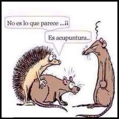 Humor(es) #10701347