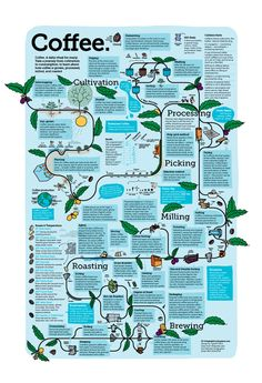 A visual knowledge trip from growing coffee plants to produci… Coffee production. A visual knowledge trip from growing coffee plants to producing coffee beans for your daily cup of coffee. Coffee Cafe, Espresso Coffee, Coffee Drinks, Chemex Coffee, Coffee Tables, Coffee Process, Nitro Coffee, Coffee Infographic, Process Infographic