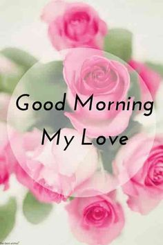 Good Morning Messages: If you like to share Good Morning with your family, relatives, lover & friends. Find out unique collections of Good Morning Msg, best good morning messages for friends in Hindi, morning love messages. Good Morning Kisses, Good Morning Love Messages, Good Morning My Love, Good Morning Texts, Good Morning Picture, Good Night Image, Morning Quotes, Morning Messages, Morning Humor