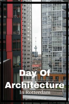 Day of Architecture: The Erasmusbrug & The Red Apple -