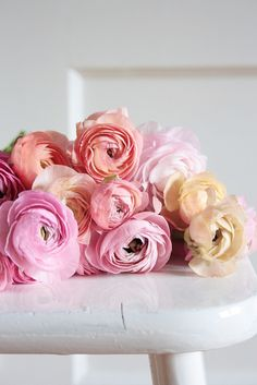 [Let's Go Outside baby shower]  lots of pink ranunculus all over the tables would be so lovely