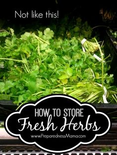 Purchase herbs from the grocer and make them last as long as possible. How to Sotre fresh herbs | PreparednessMama