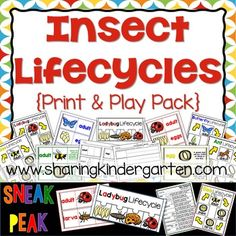 This pack contains the following items for EACH insect {ladybug, butterfly, bee, and ant}Teacher chart- completed {color}Teacher chart- build as you teachTeacher chart- black and whiteStudent lifecycle cut and pastewriting activity with cut and paste2 level version of lifecycle cards with matching printables-one version contains term and image-other version contains term, image, and descriptionlifecycle puzzle for centersFull page Teacher Glossary of terms to poststudent printable version…