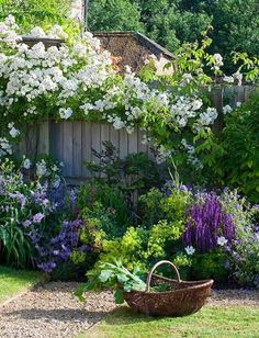 This is my kind of garden. Full of wonderful things, cutting flowers and random loveliness.