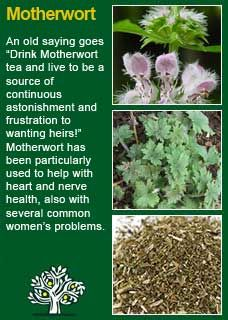 Natural Remedy For Boils Nz