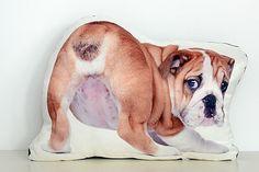 bed, bath & bulldogs #HowTo #DIY #pets