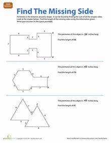 This worksheet will help students deepen their understanding of third grade geometry worksheets find the missing side fandeluxe Image collections