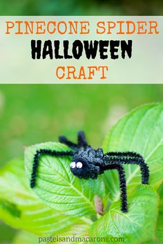 Pinecone Spider Halloween Craft by pastels & Macarons #halloween #pineconecraft #halloweencraft #craft #diy #handmade #kidsactivity #kidscraft #autumn #fall #spider #spidercraft #diyspider #diyspidercraft #pipecleaner #pipecleanercraft
