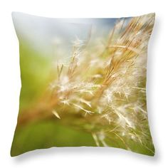 Background Throw Pillow featuring the photograph Wispy Plant by Kicka Witte - Printscapes