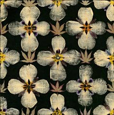 #inspiration #mood #pattern #design gunilla lagerhem_herbarium