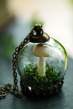 The clearest way into the Universe is through a forest wilderness - John Muir  A tiny Autumn mushroom grows nestled in a bed of soft woodland moss and real dandelion wishes in this magical miniature terrarium pendant. A perfect capsule garden for flower faeries and mushroom foragers alike!  This pendant hangs on a 24 inch long bronze chain, The glass globe measures about 20mm and is much sturdier than it looks, this piece was designed for normal wear. See more miniature terrarium jewellery…