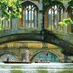 The bridge of sigh Cambridge Uk, Gallery, Instagram