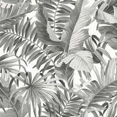This large scale palm leaf wallpaper is a modern way to give your home a tropical style. The blue leaves in shades of indigo pop against a white linen background. Alfresco is a non woven, unpasted wallpaper. Palm Leaf Wallpaper, Tropical Wallpaper, Botanical Wallpaper, Wallpaper Roll, Peel And Stick Wallpaper, Print Wallpaper, Tree Wallpaper, Wallpaper For Hallways, Aztec Pattern Wallpaper