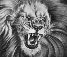 The King drawing by Garvel Art from Valencia, Spain Lioness Tattoo, Tiger Tattoo, Cat Tattoo, Tattoo Drawings, King Tattoos, Top Tattoos, Body Art Tattoos, Lion Tattoo Sleeves, Mens Lion Tattoo