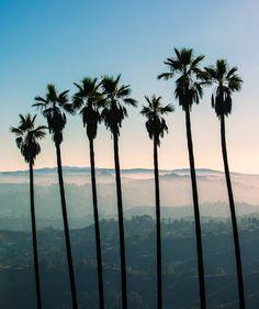 5×5: Los Angeles – Free People Blog