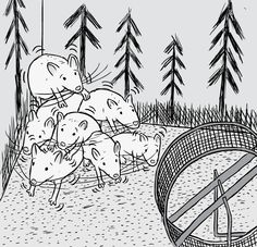 Twitchy rats huddle together in the corner of their enclosure. Cartoon image of the Rat Park drug experiments. Withdrawal symptoms shown in worried rats.  Image from Stuart McMillen's comic Rat Park.