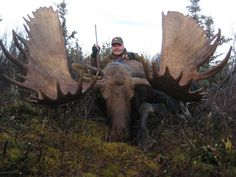 biggest moose in the world