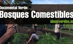 Documental Verde : Estableciendo Bosques Comestibles