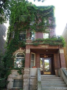 Chicago Brownstones just like the ones my granda owns. Love this place.