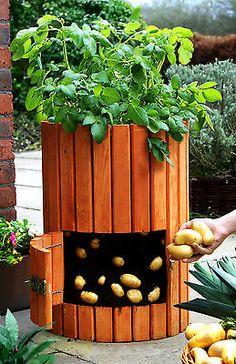 Qualitativ hochwertiger Kartoffelfässer aus Holz Pflanztopf Pflanzen Kräutertopf