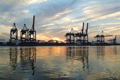 Hamburg Cranes