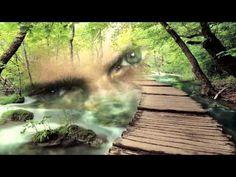 Se Va Muriendo Mi Alma-Marco Antonio Solis-Traducere in romana - YouTube Marco Antonio Solis, Artist, Youtube, Music, Musica, Musik, Artists, Muziek, Music Activities