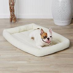 Padded Pet Bolster Bed       >>>>> Buy it now    http://amzn.to/2bANuoF