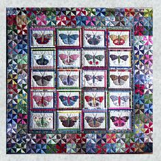 Shop | Category: Patterns - Quilts | Product: The Butterfly Collection