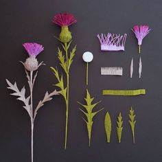 Pocket Field Guide for Paper Plants: Thistle. One of the first Castle in the air: plants I ever crafted and a personal favorite. Excited to see early signs of it along the trails!) Florist crepe, wire, and spun cotton forms, courtesy of Paper Flowers Craft, Crepe Paper Flowers, Paper Roses, Felt Flowers, Flower Crafts, Diy Flowers, Fabric Flowers, Paper Peonies, Diy Paper